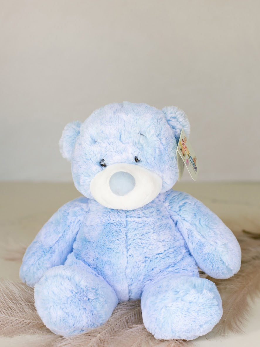 Baby Blue Teddy